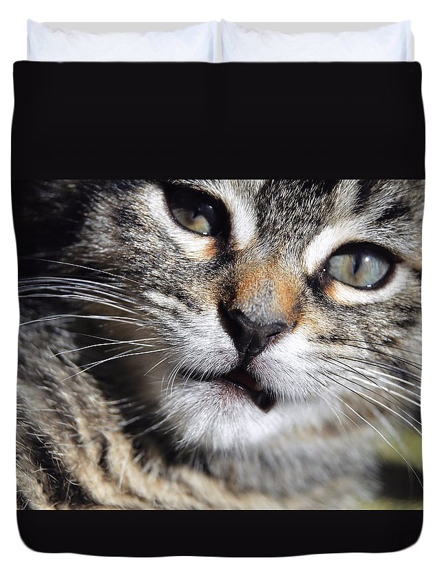 Cat Duvet Cover featuring the photograph One Of Those Days by JAMART Photography