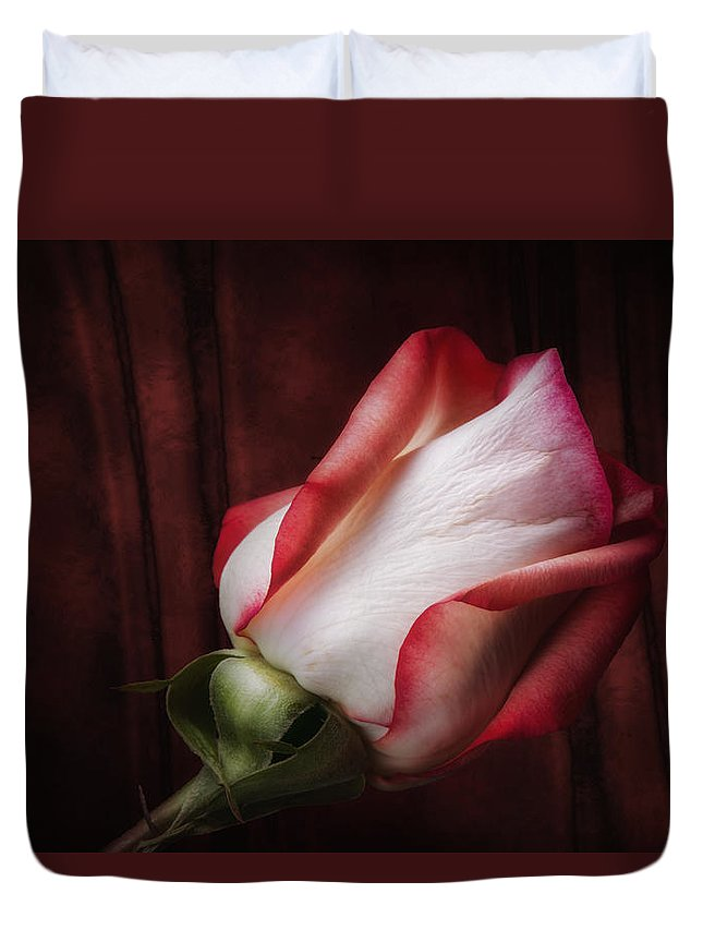 Art Duvet Cover featuring the photograph One Red Rose Still Life by Tom Mc Nemar