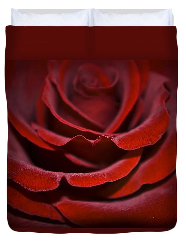 Rose Duvet Cover featuring the photograph One Red Rose by Svetlana Sewell