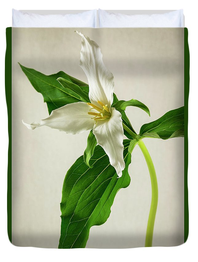Spring Duvet Cover featuring the photograph One Trillium by Masako Metz