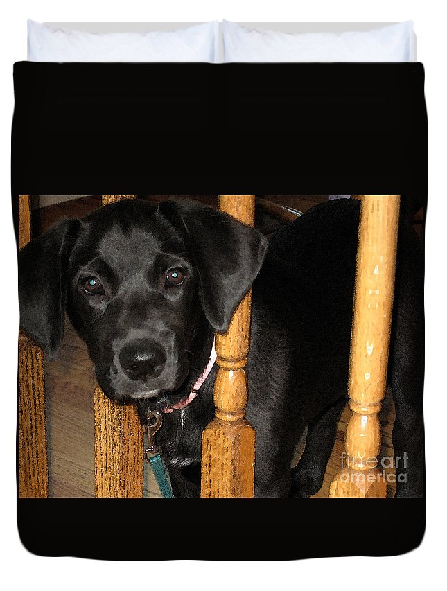 Dog Duvet Cover featuring the photograph One Way Only by Rhonda Chase