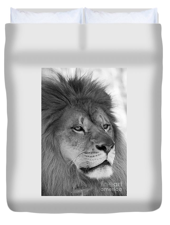 Lion Duvet Cover featuring the photograph Onyo #10 Black And White by Judy Whitton