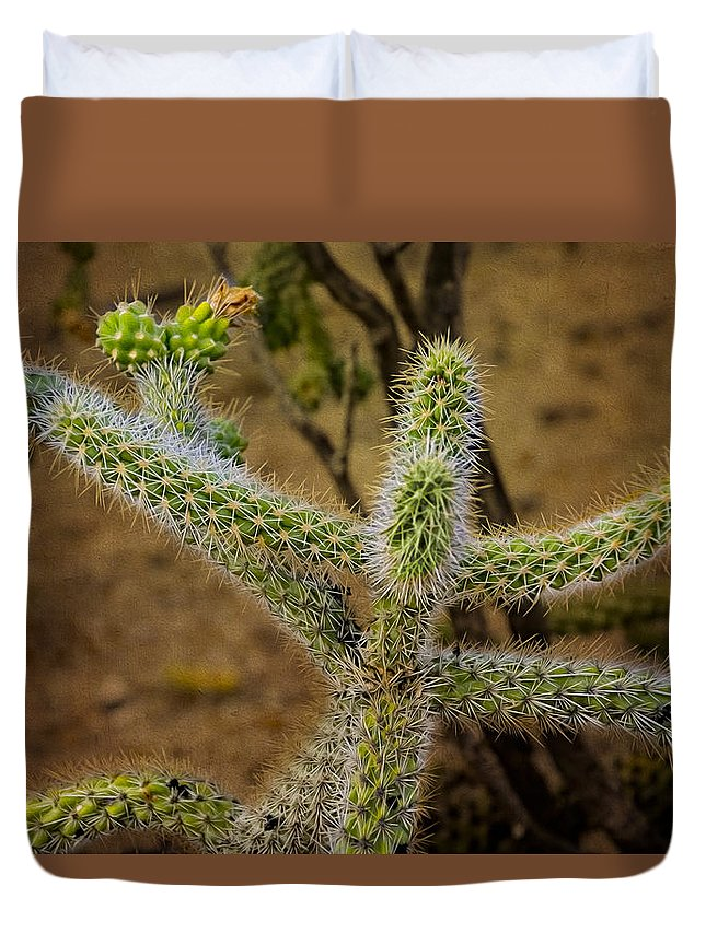 Oro Valley Duvet Cover featuring the photograph Open Arms by Mark Myhaver