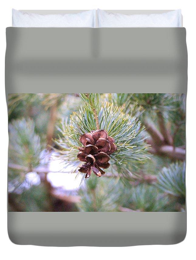 Karen Silvestri Duvet Cover featuring the photograph Open Pine Cone by Karen Silvestri