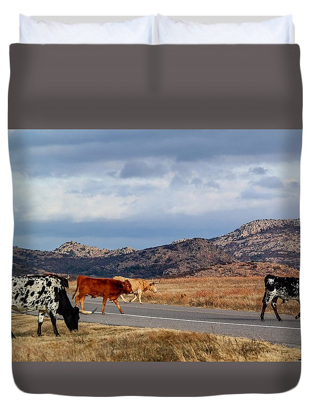 Cow Duvet Cover featuring the photograph Open Range by Lance Kenyon