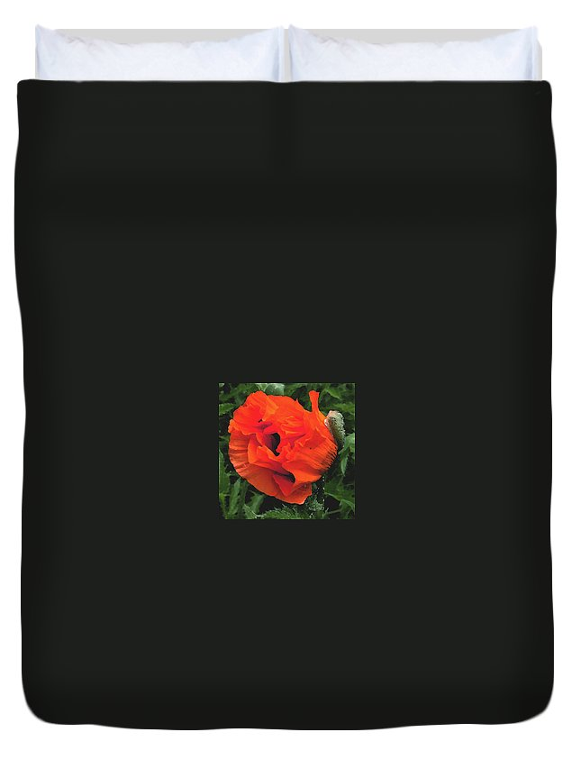 Opium Poppy Duvet Cover featuring the photograph Opium by Heather Lennox