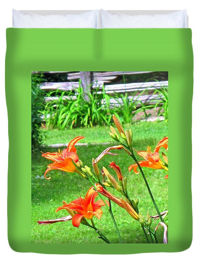 Lilly Duvet Cover featuring the photograph Orange And Green by Ian MacDonald