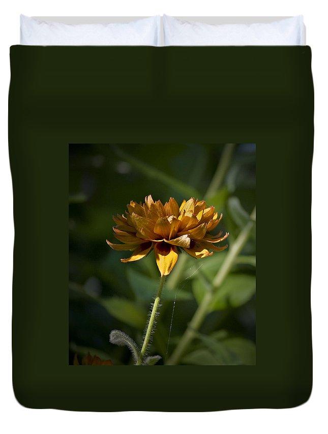 Orange Duvet Cover featuring the photograph Orange Blanket Flower by Teresa Mucha