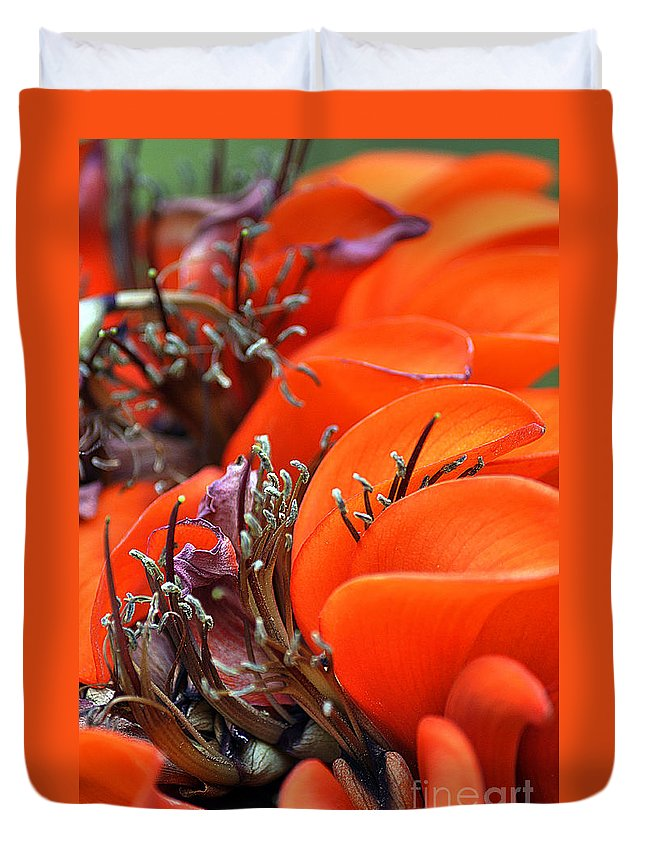 Clay Duvet Cover featuring the photograph Orange by Clayton Bruster