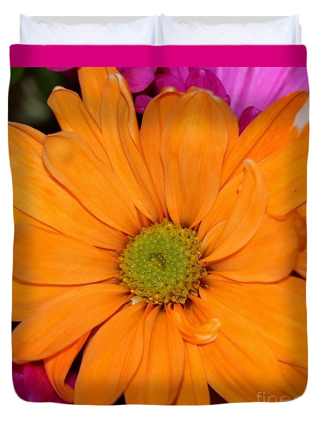 Orange Duvet Cover featuring the photograph Orange Crush Daisy by Diann Fisher