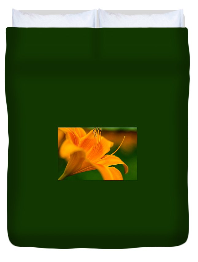 Flower Duvet Cover featuring the photograph Orange Flower by Drew Werner
