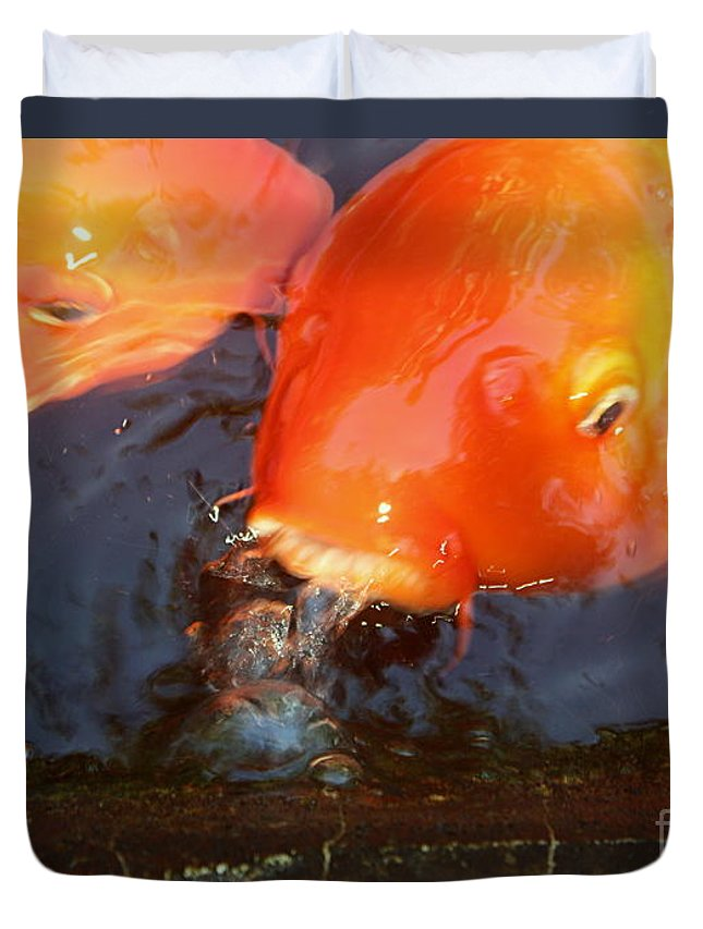 Koi Duvet Cover featuring the photograph Orange Kiss by Irina Davis