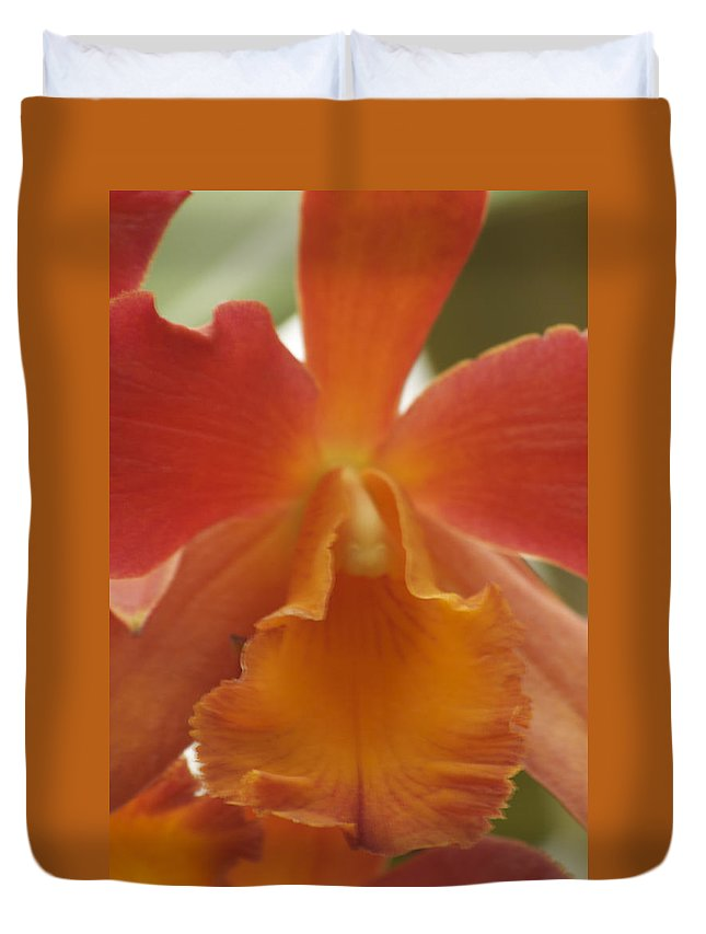 Orange Duvet Cover featuring the photograph Orange Orchid 2 by Michael Peychich