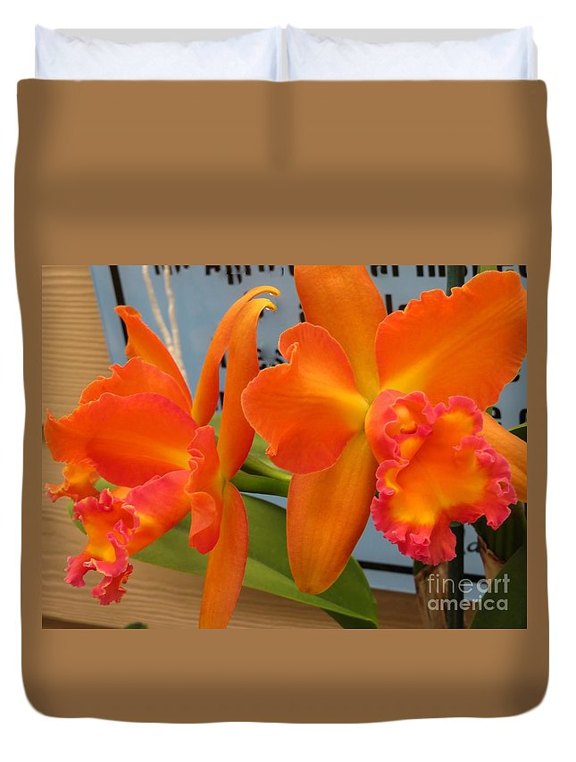 Orange Orchid Duvet Cover featuring the photograph Orange Orchid by Nili Tochner