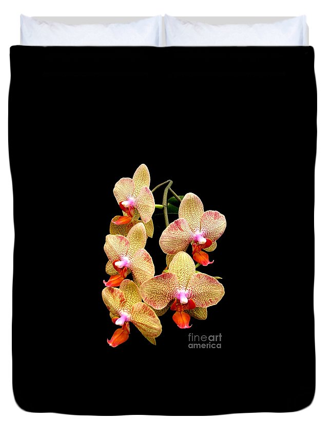 Orange Orchid Duvet Cover featuring the photograph Orange Orchid Phalaenopsis by Rose Santuci-Sofranko