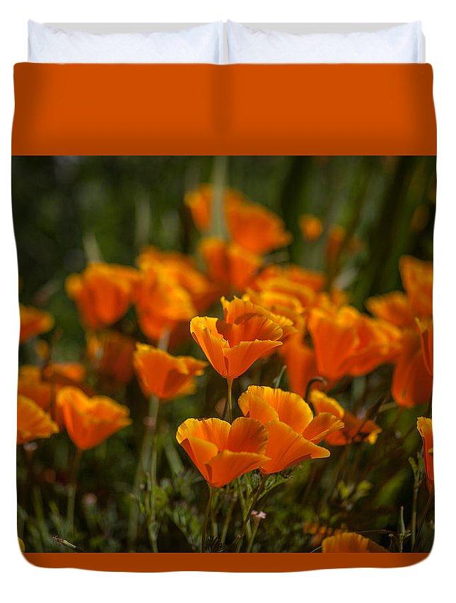 Poppy Duvet Cover featuring the photograph Orange Poppy by Yuri Levchenko
