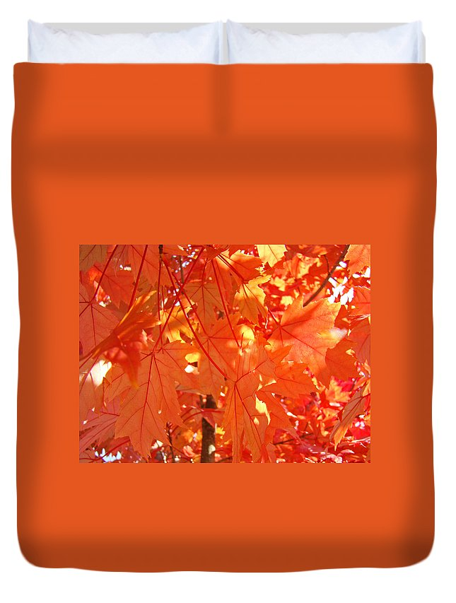Autumn Duvet Cover featuring the photograph Orange Red Fall Leaves Autumn Tree Art Baslee Troutman by Baslee Troutman