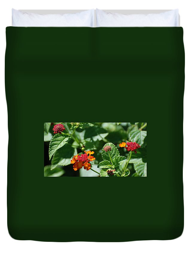 Orange Duvet Cover featuring the photograph Orange Red Flowers by Rob Hans