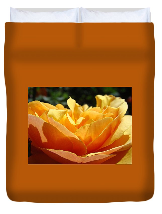 Rose Duvet Cover featuring the photograph Orange Rose Art Prints Baslee Troutman by Baslee Troutman