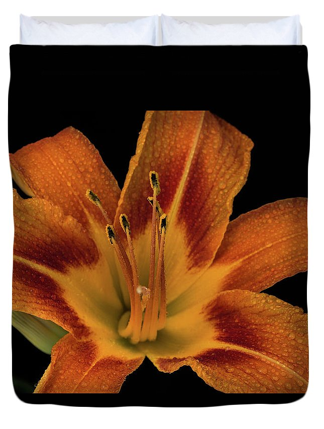 Lily Duvet Cover featuring the photograph Orange Tiger Lily by Greg Thiemeyer