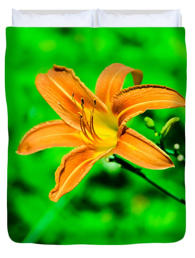 Flower Duvet Cover featuring the photograph Orange Tiger Lily by Jennifer Wick