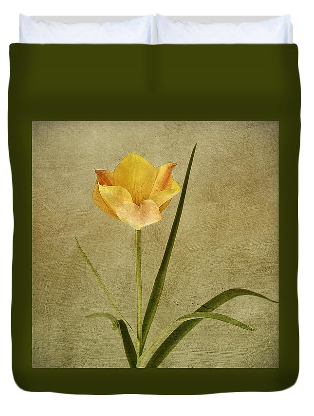 Tulip Duvet Cover featuring the photograph Orange Tulip by Robert Murray