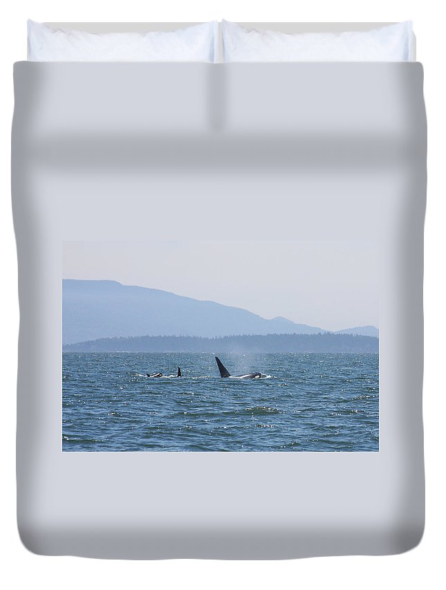 Orcas Duvet Cover featuring the photograph Orcas by Stacy Egnor