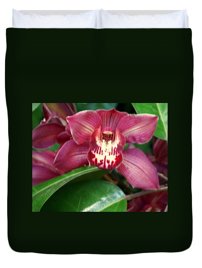 Flower Duvet Cover featuring the photograph Orchid 10 by Marty Koch