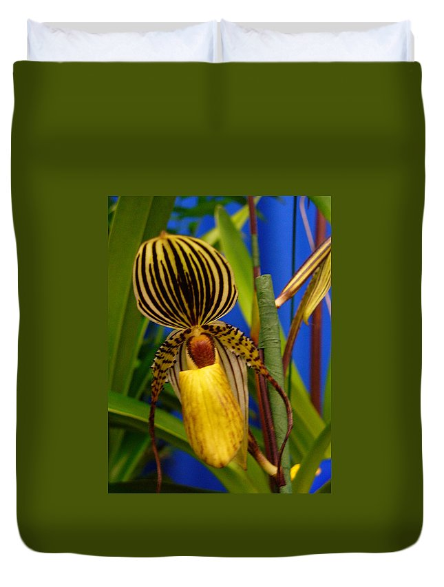Orchids Duvet Cover featuring the photograph Orchid 10 by Peggy King