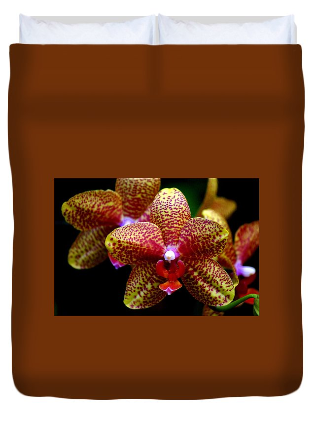 Flower Duvet Cover featuring the photograph Orchid 15 by Marty Koch