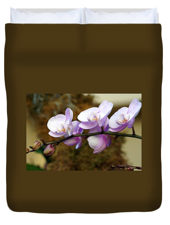 Flower Duvet Cover featuring the photograph Orchid 18 by Marty Koch