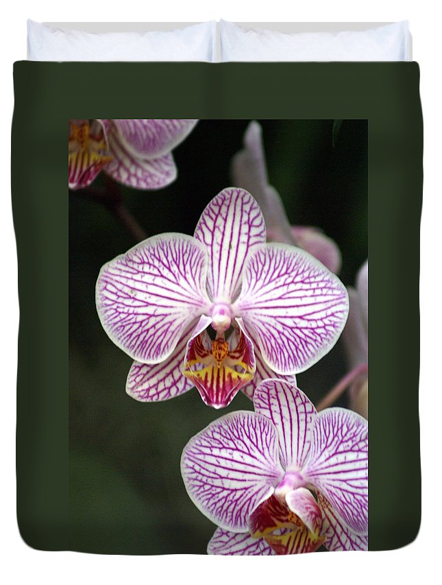 Flower Duvet Cover featuring the photograph Orchid 22 by Marty Koch