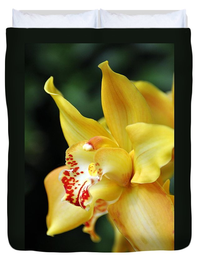 Orchid Duvet Cover featuring the photograph Orchid 24 by Marty Koch