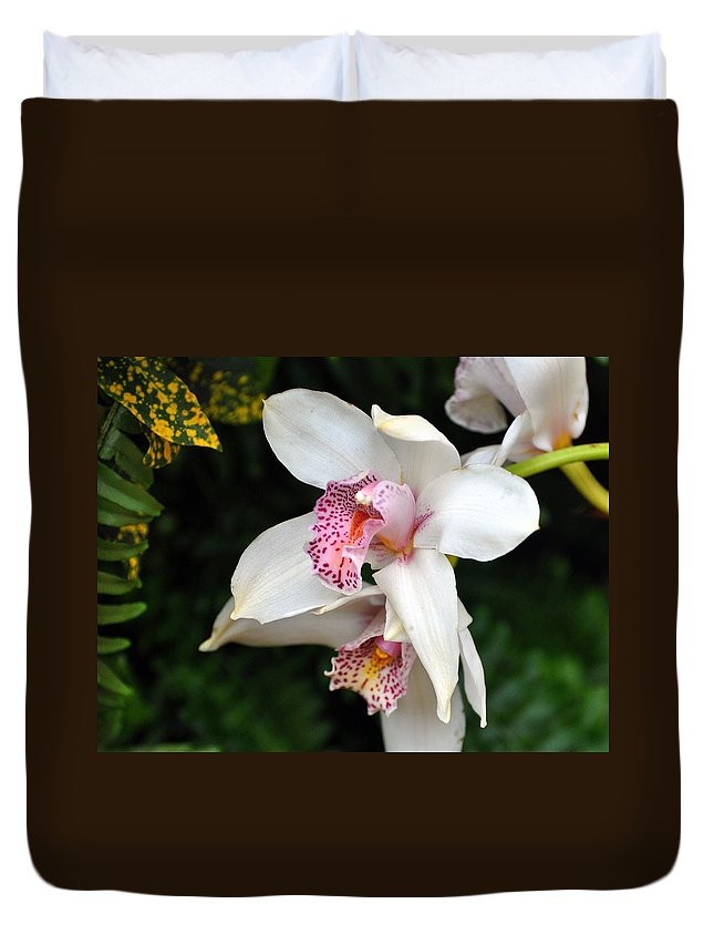 Flower Duvet Cover featuring the photograph Orchid 29 by Marty Koch