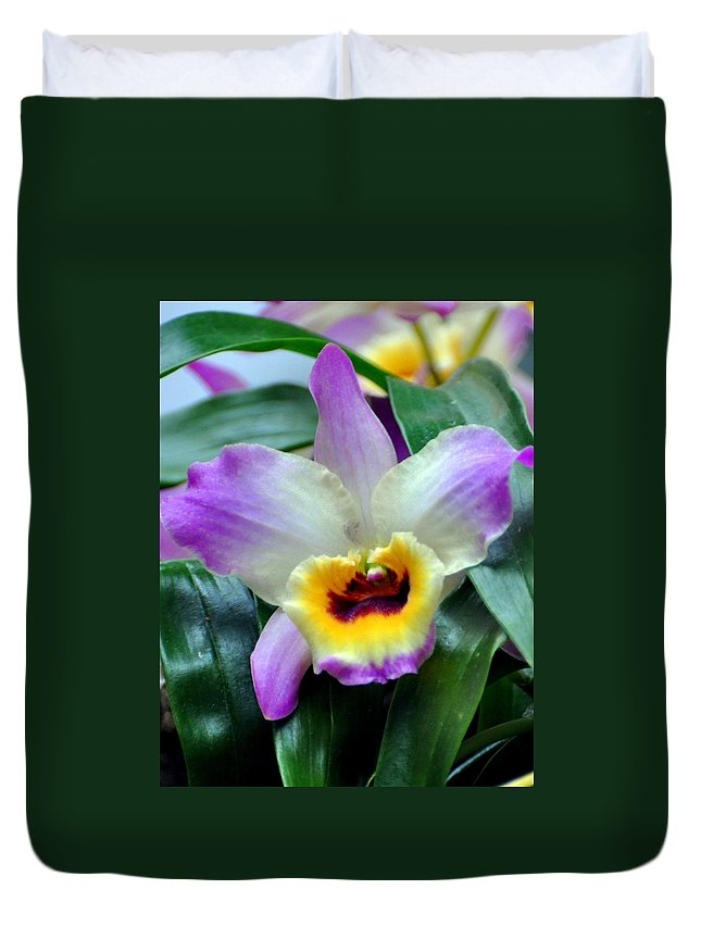 Orchid Duvet Cover featuring the photograph Orchid 34 by Marty Koch