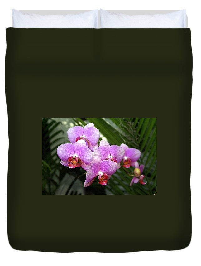 Flower Duvet Cover featuring the photograph Orchid 4 by Marty Koch