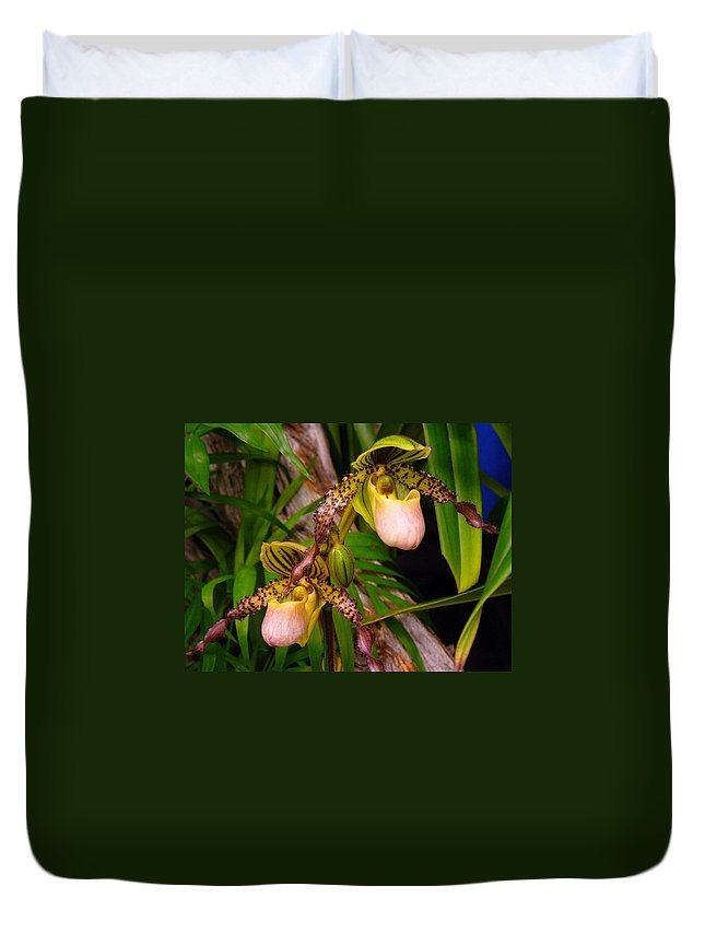 Orchid Duvet Cover featuring the photograph Orchid 4 by Peggy King