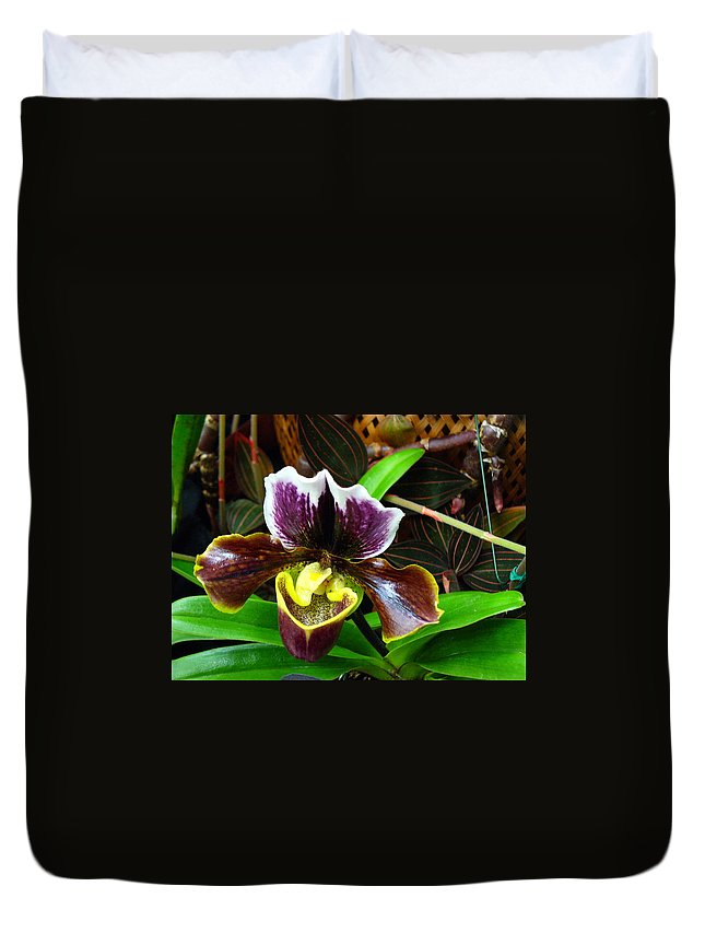 Orchid Duvet Cover featuring the photograph Orchid 5 by Peggy King