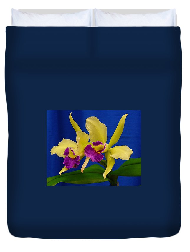 Orchids Duvet Cover featuring the photograph Orchid 7 by Peggy King