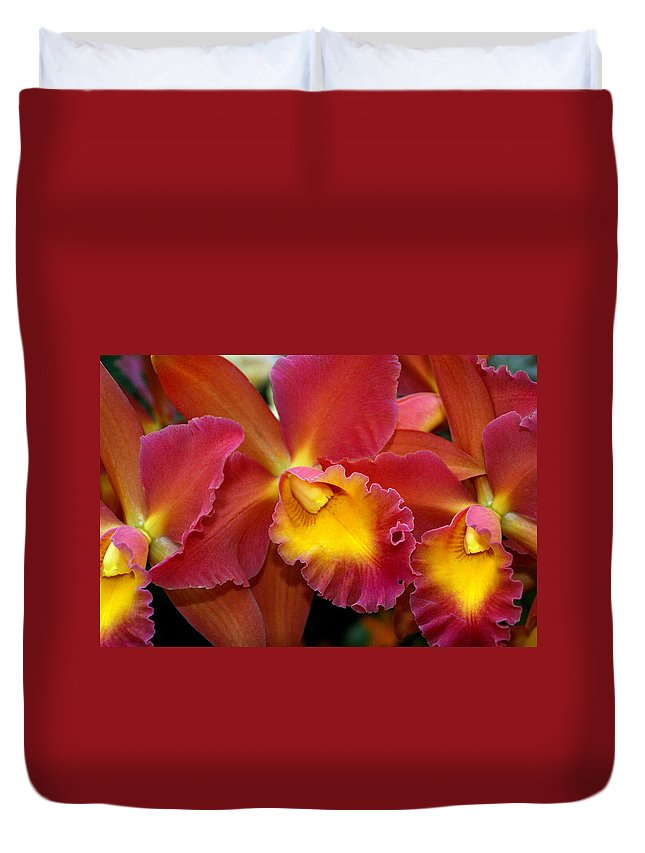 Flower Duvet Cover featuring the photograph Orchid 8 by Marty Koch