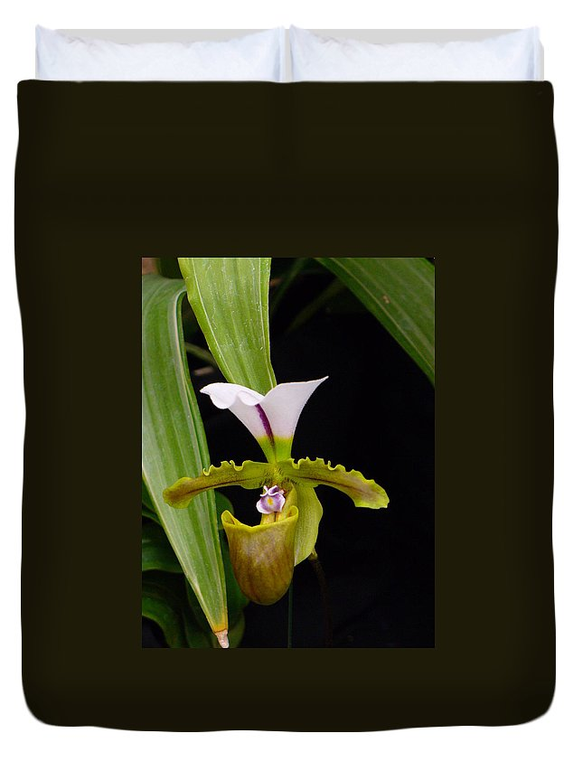 Orchid Duvet Cover featuring the photograph Orchid 9 by Peggy King