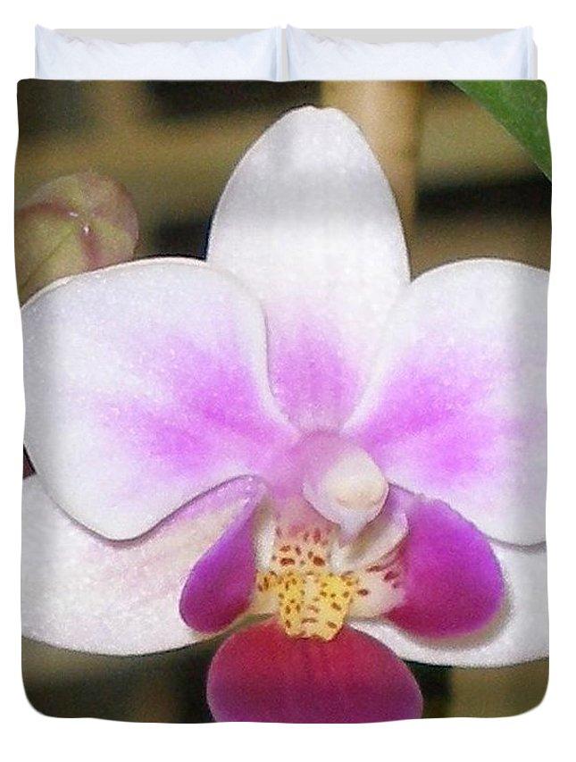 Purple Duvet Cover featuring the photograph Orchid Explosion by Maria Bonnier-Perez