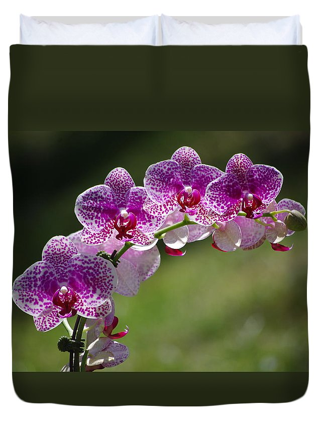 Orchid Duvet Cover featuring the photograph Orchid by Gerald Kloss