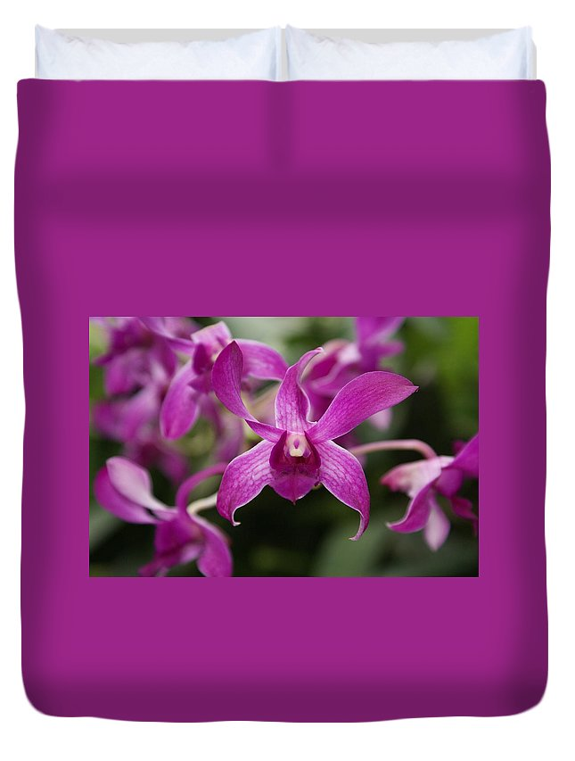 Orchid Duvet Cover featuring the photograph Orchid by Heather Coen