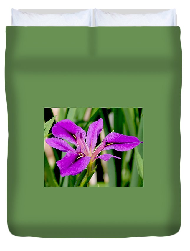 Flower Duvet Cover featuring the photograph Orchid Iris by Kelley Conkling