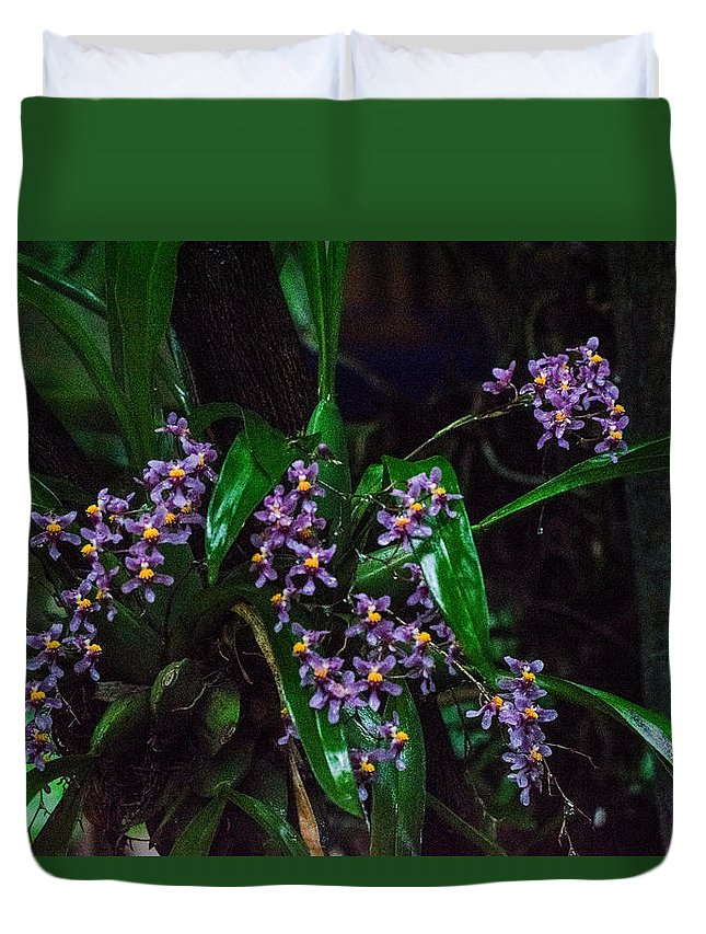 Orchid Duvet Cover featuring the photograph Orchid by Totto Ponce