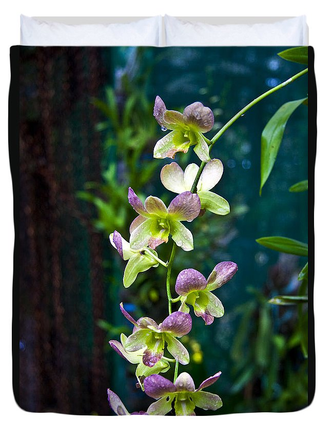 Nature Duvet Cover featuring the photograph Orchids by George Cabig