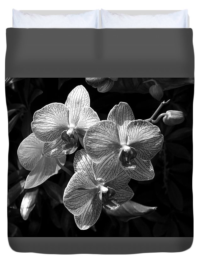 Ann Keisling Duvet Cover featuring the photograph Orchids In Black And White by Ann Keisling
