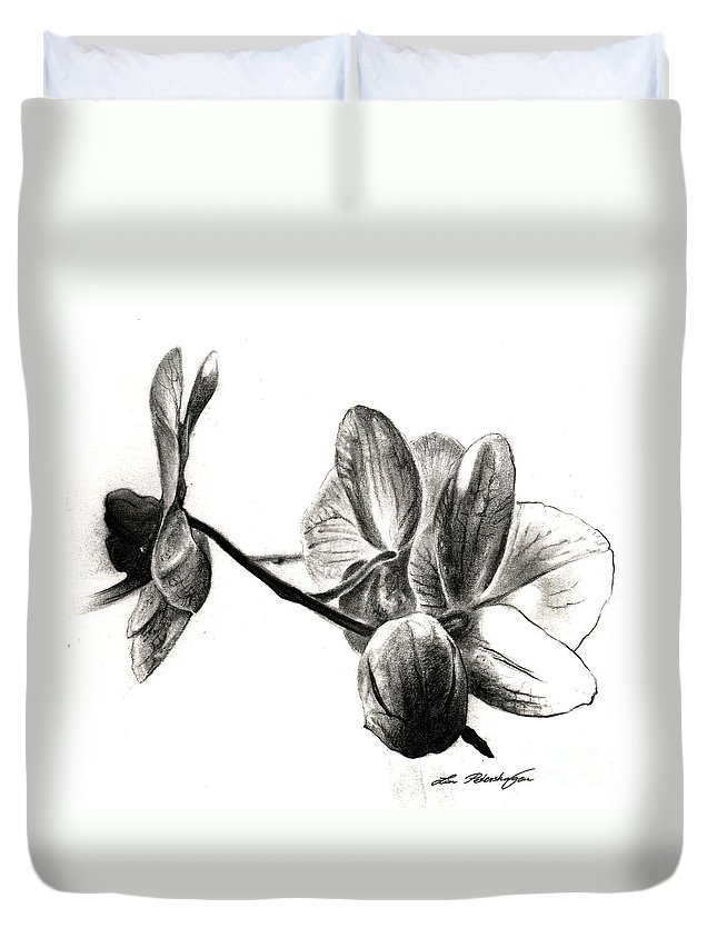 Lin Petershagen Duvet Cover featuring the drawing Orchids In Black by Lin Petershagen