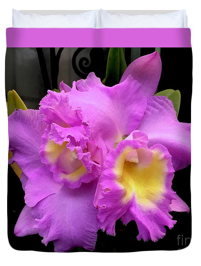 Art Duvet Cover featuring the photograph Orchids In Fuchsia by Jeannie Rhode
